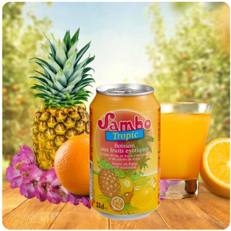 Sambo Tropic x24u